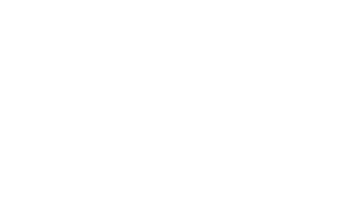 Seltice Systems LLC